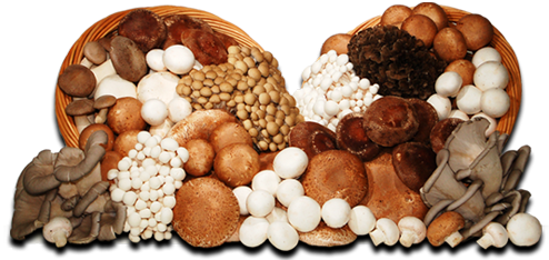 CF Fresh, LLC d/b/a Country Fresh Mushrooms
